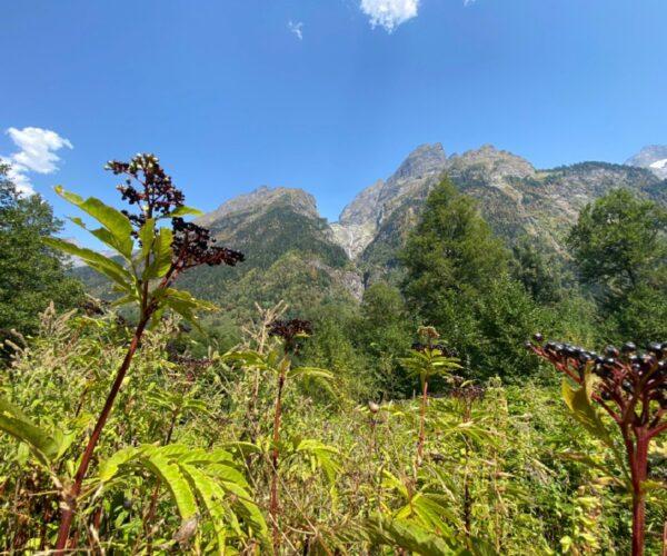 Долина Адзгара